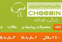 Choobin